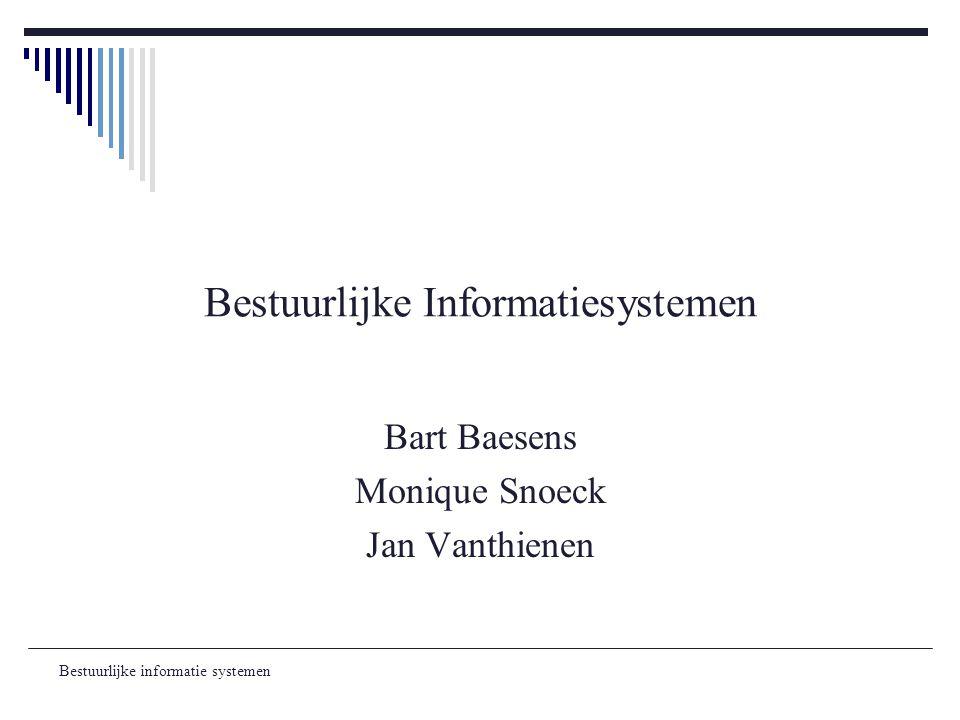 Bestuurlijke Informatiesystemen