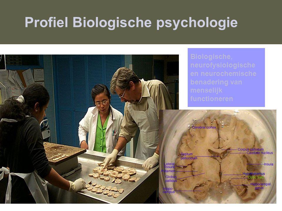 Profiel Biologische psychologie
