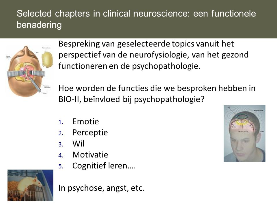 Selected chapters in clinical neuroscience: een functionele benadering