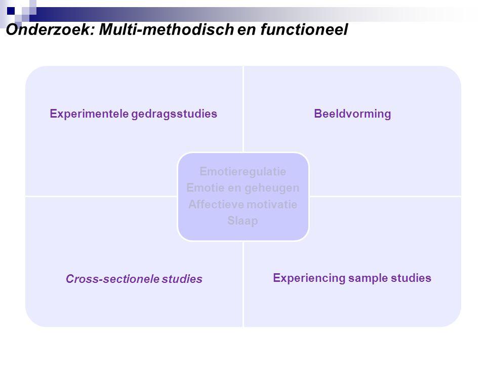 Onderzoek: Multi-methodisch en functioneel
