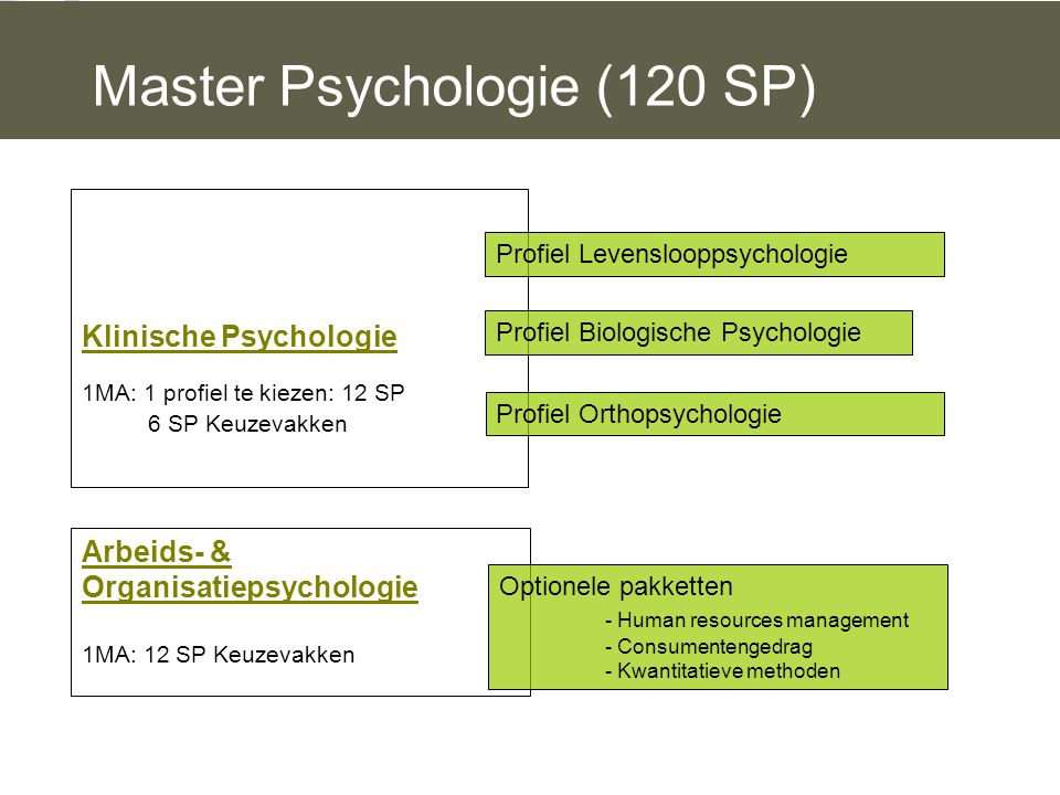 Master Psychologie (120 SP)