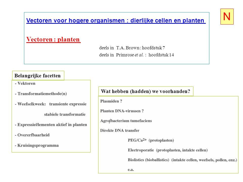 N Vectoren voor hogere organismen : dierlijke cellen en planten. Vectoren : planten. deels in T.A. Brown : hoofdstuk 7.