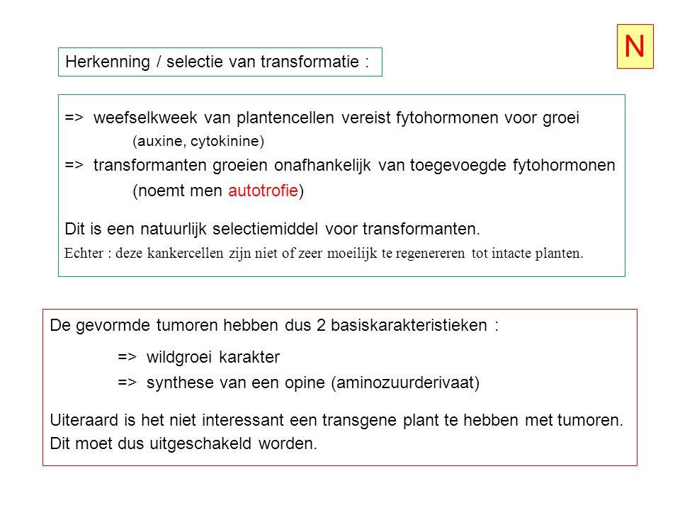 N Herkenning / selectie van transformatie :