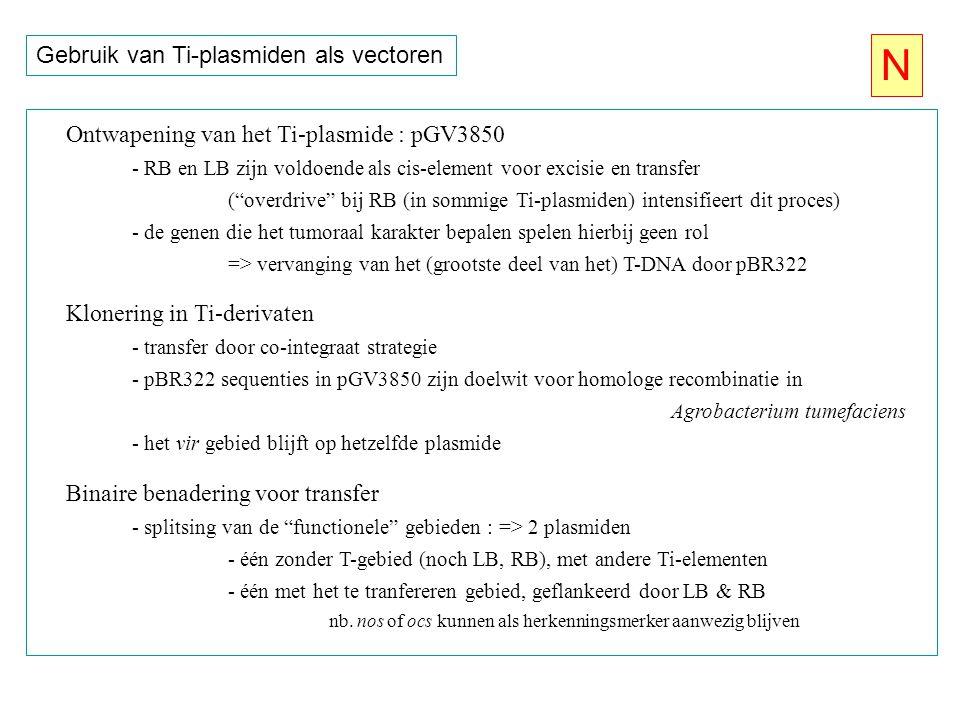 N Gebruik van Ti-plasmiden als vectoren
