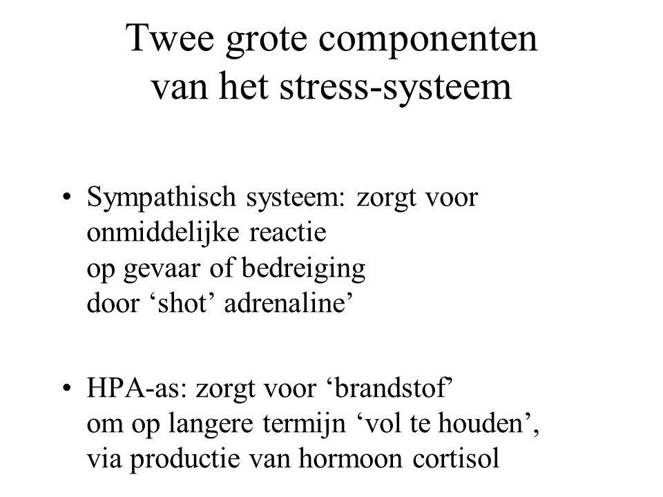 Twee grote componenten van het stress-systeem