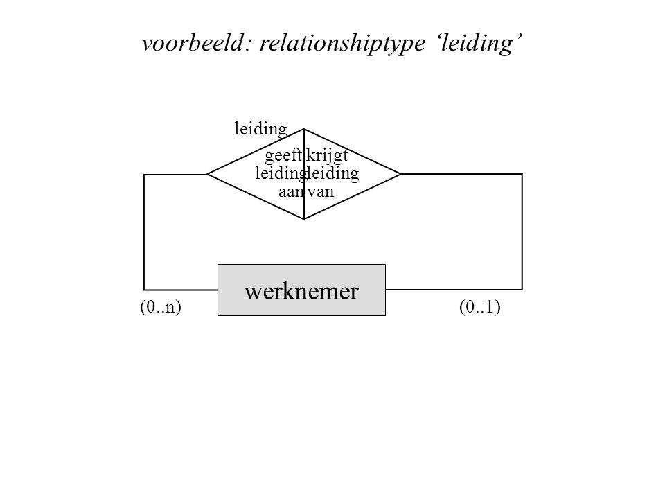 voorbeeld: relationshiptype 'leiding'