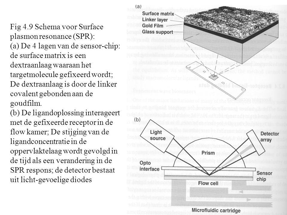 Fig 4.9 Schema voor Surface plasmon resonance (SPR): (a) De 4 lagen van de sensor-chip: de surface matrix is een dextraanlaag waaraan het targetmolecule gefixeerd wordt; De dextraanlaag is door de linker covalent gebonden aan de goudfilm.