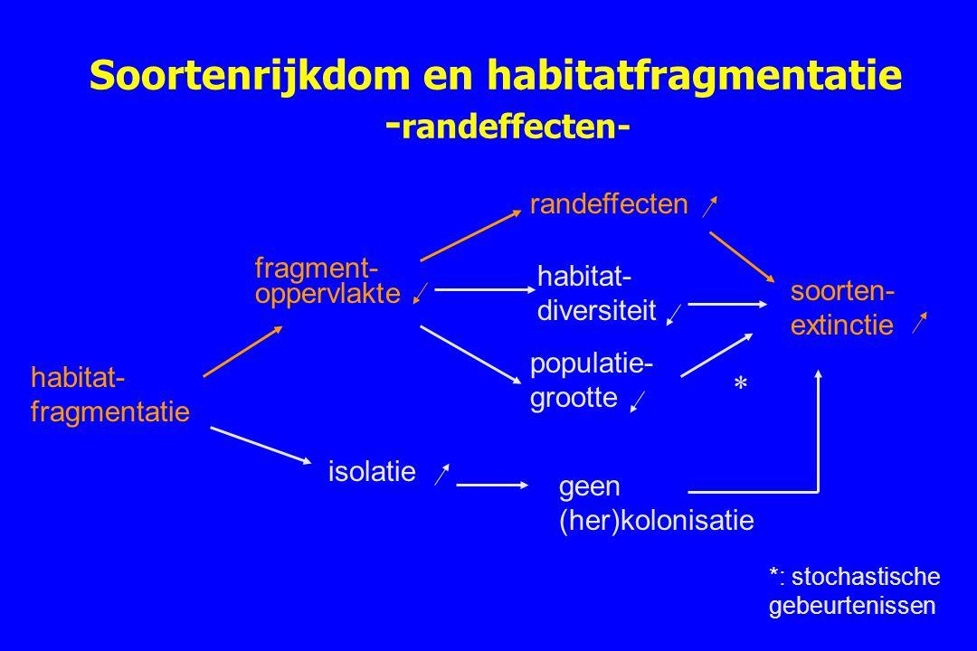 Soortenrijkdom en habitatfragmentatie -randeffecten-