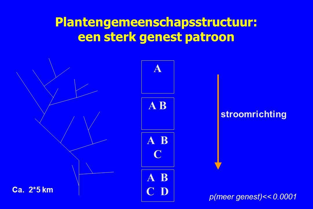 Plantengemeenschapsstructuur: een sterk genest patroon