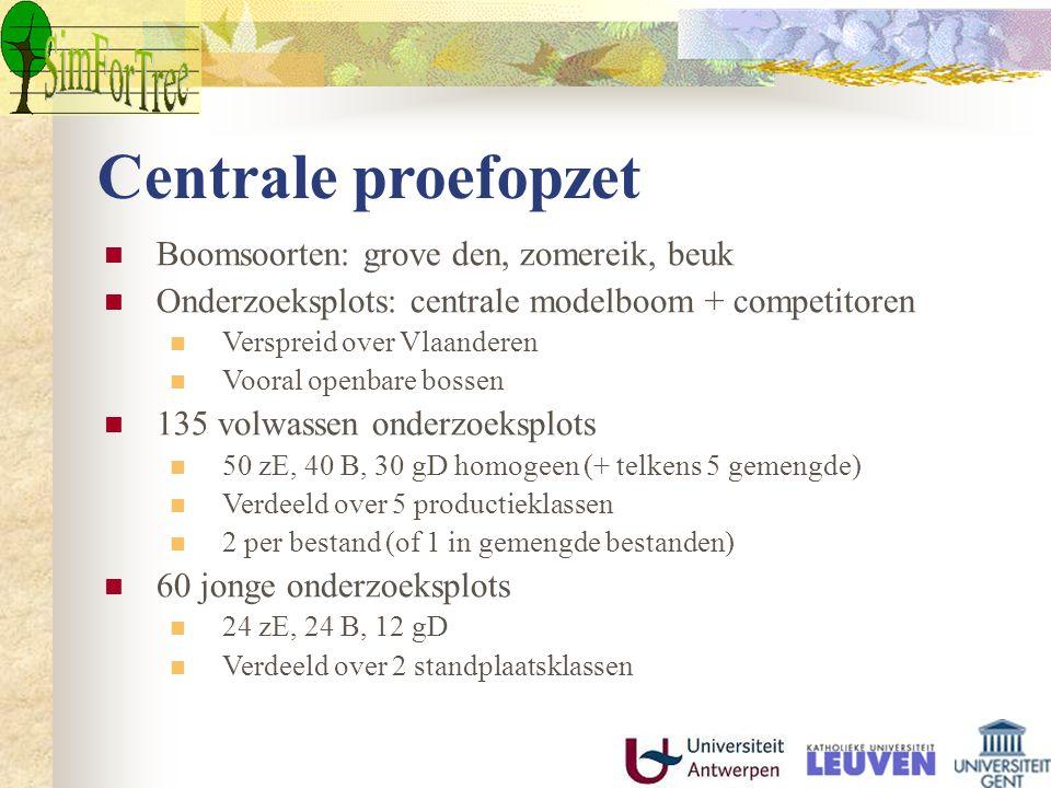 Centrale proefopzet Boomsoorten: grove den, zomereik, beuk