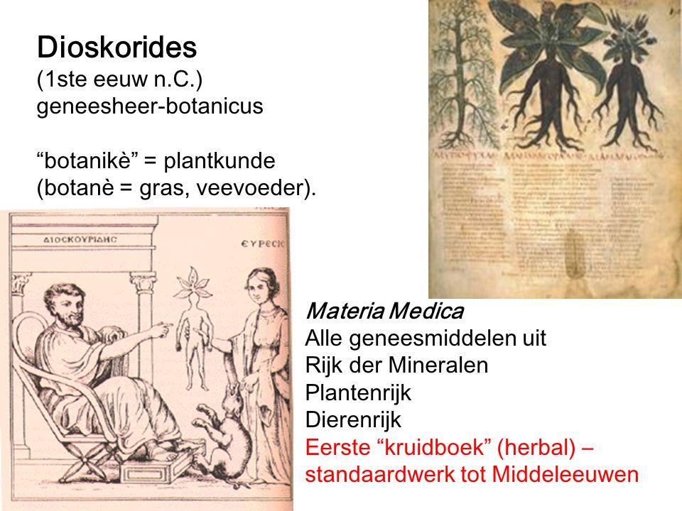 Dioskorides (1ste eeuw n.C.) geneesheer-botanicus