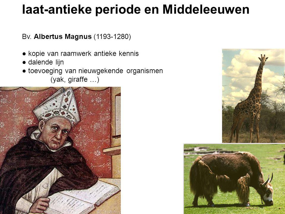 laat-antieke periode en Middeleeuwen