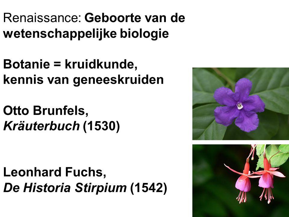 Renaissance: Geboorte van de wetenschappelijke biologie