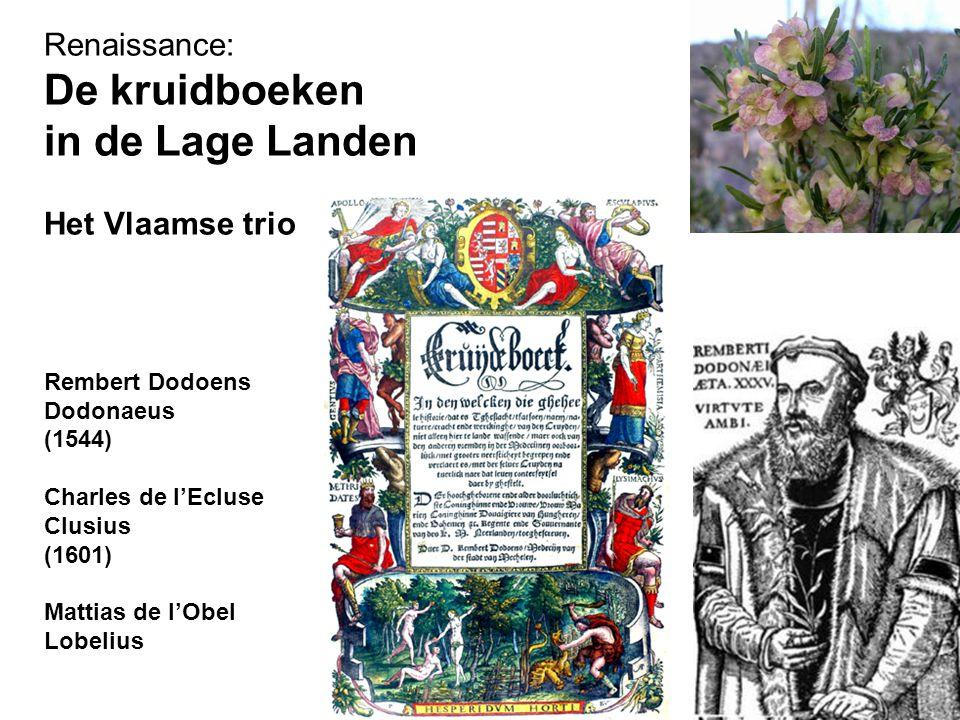 De kruidboeken in de Lage Landen Renaissance: Het Vlaamse trio