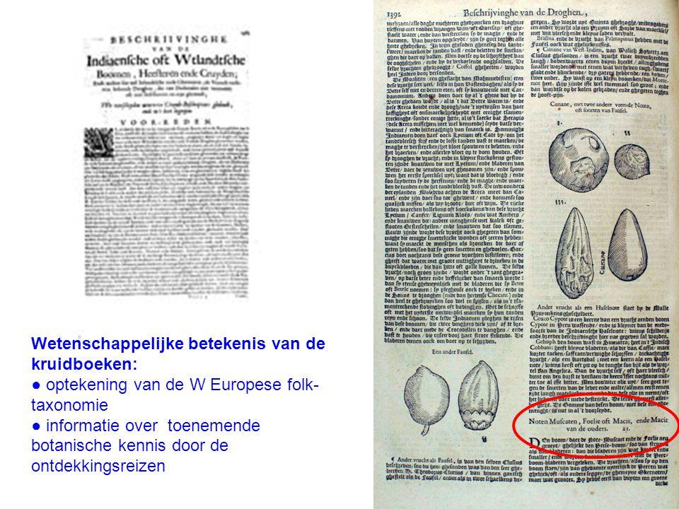 Wetenschappelijke betekenis van de kruidboeken:
