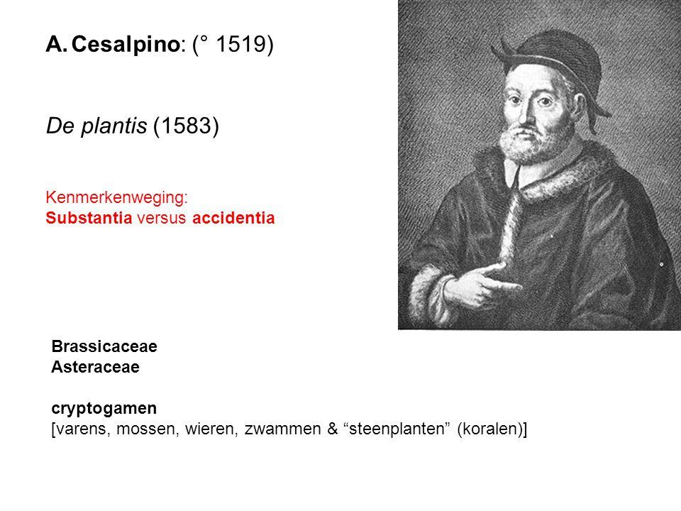Cesalpino: (° 1519) De plantis (1583) Kenmerkenweging: