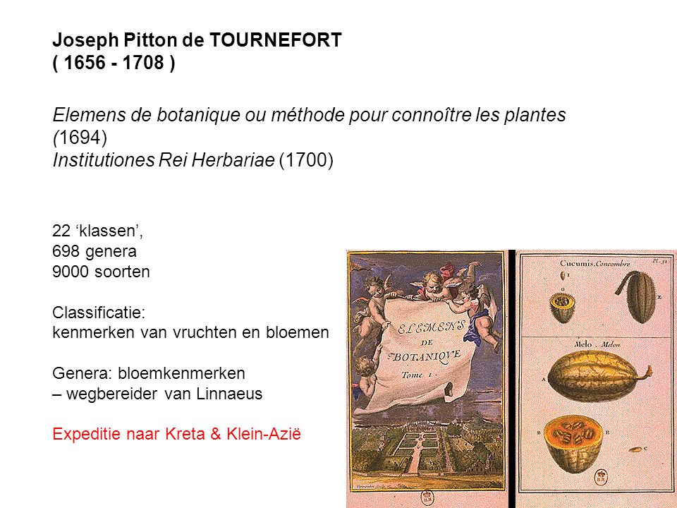 Joseph Pitton de TOURNEFORT ( 1656 - 1708 )