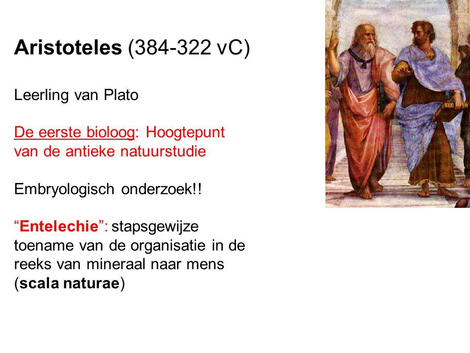 Aristoteles (384-322 vC) Leerling van Plato