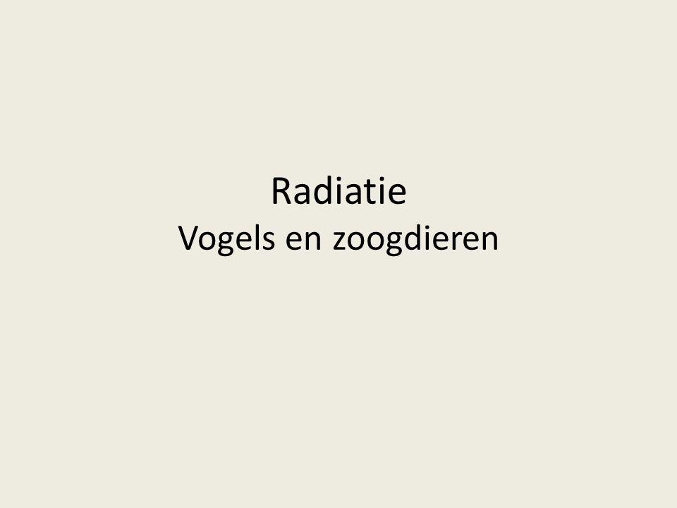 Radiatie Vogels en zoogdieren