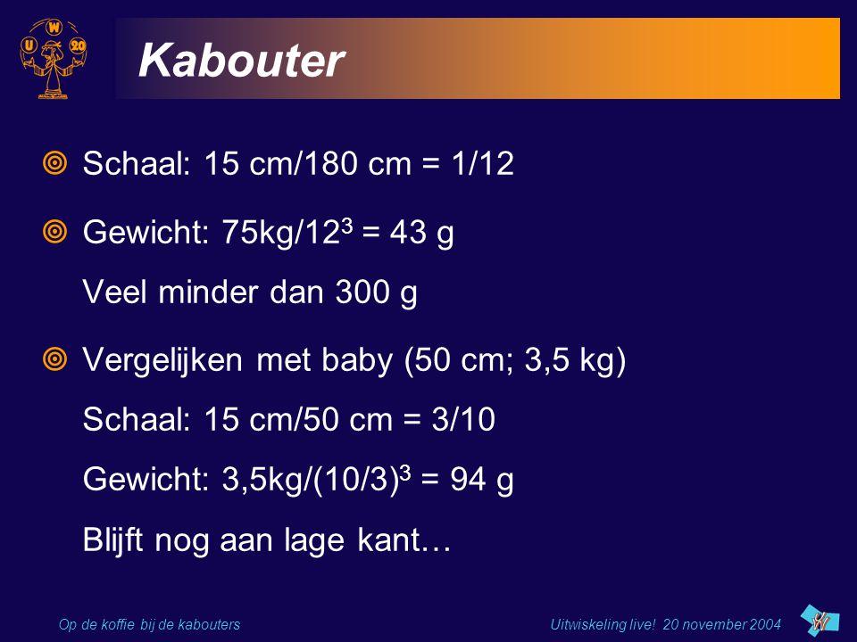 Kabouter Schaal: 15 cm/180 cm = 1/12