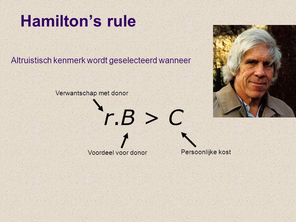 r.B > C Hamilton's rule