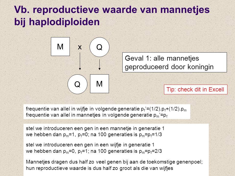 Vb. reproductieve waarde van mannetjes bij haplodiploiden