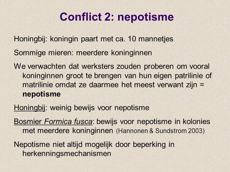 Conflict 2: nepotisme Honingbij: koningin paart met ca. 10 mannetjes