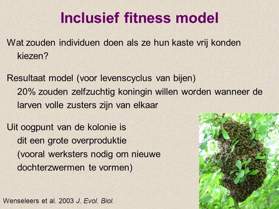 Inclusief fitness model