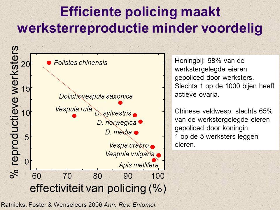 Efficiente policing maakt werksterreproductie minder voordelig