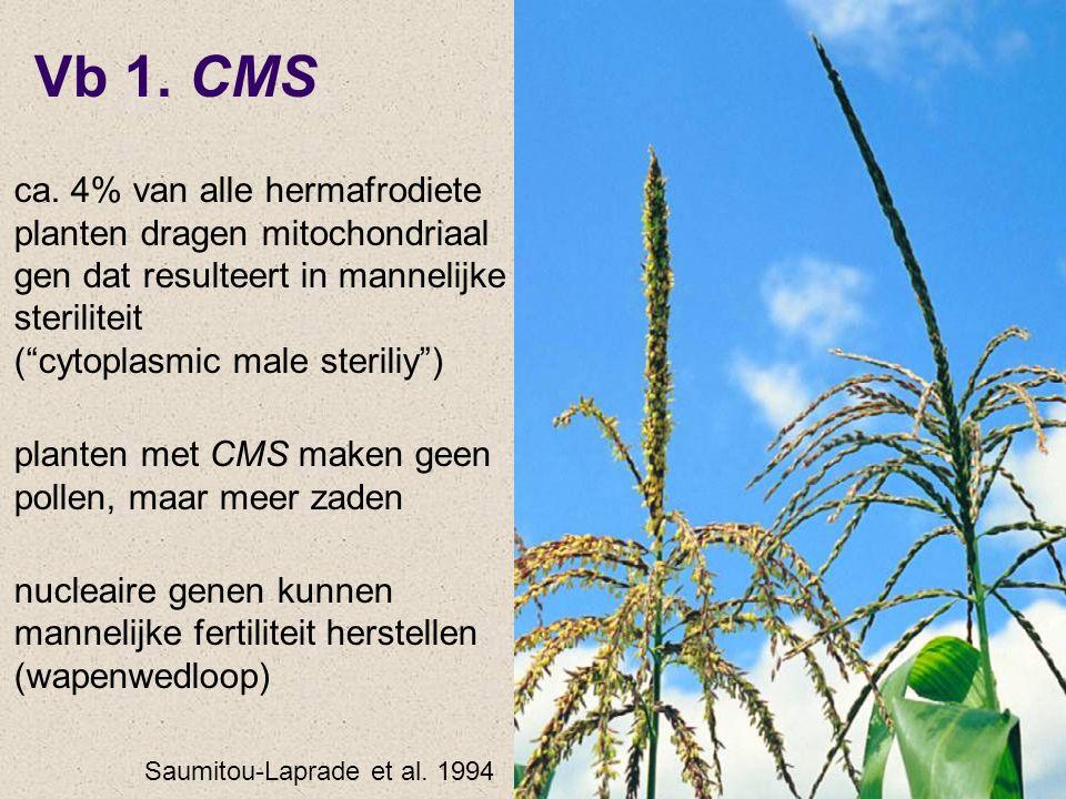 Vb 1. CMS ca. 4% van alle hermafrodiete planten dragen mitochondriaal gen dat resulteert in mannelijke steriliteit ( cytoplasmic male steriliy )