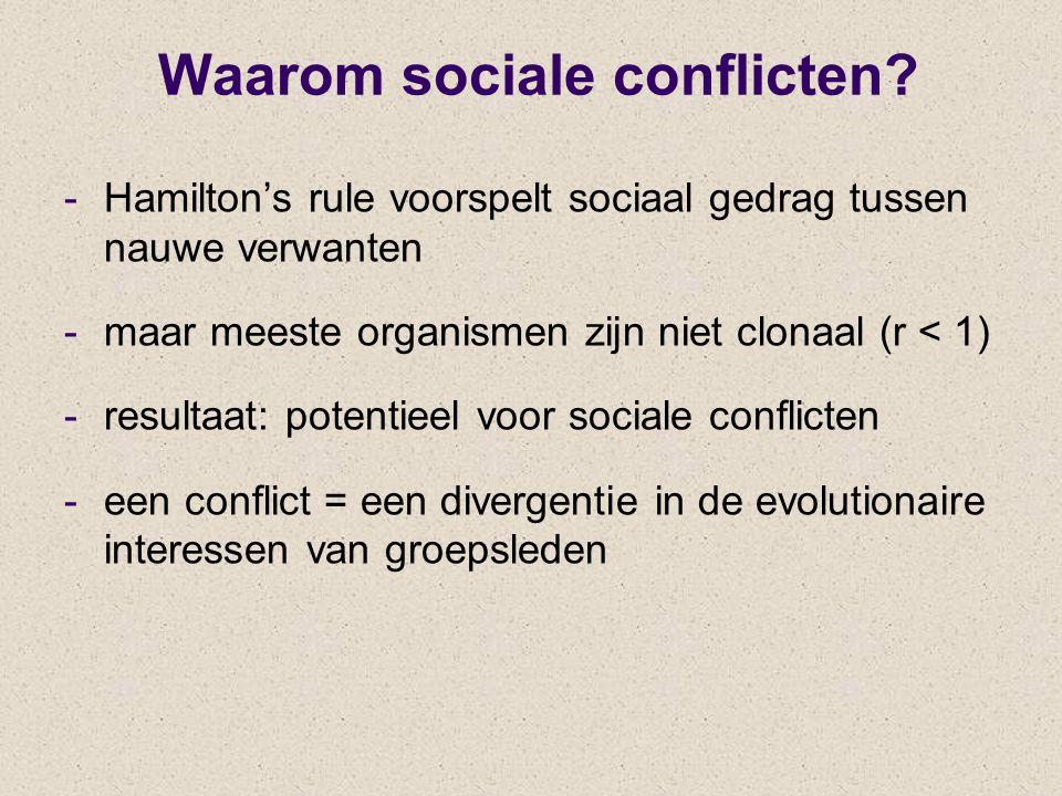 Waarom sociale conflicten
