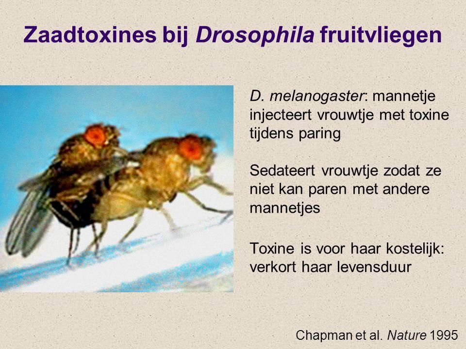 Zaadtoxines bij Drosophila fruitvliegen