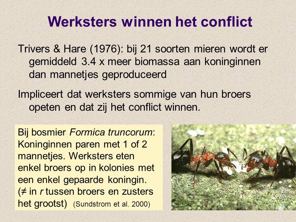 Werksters winnen het conflict