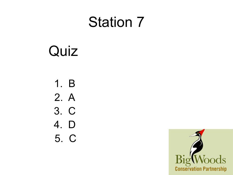 Station 7 1. B 2. A 3. C 4. D 5. C Quiz