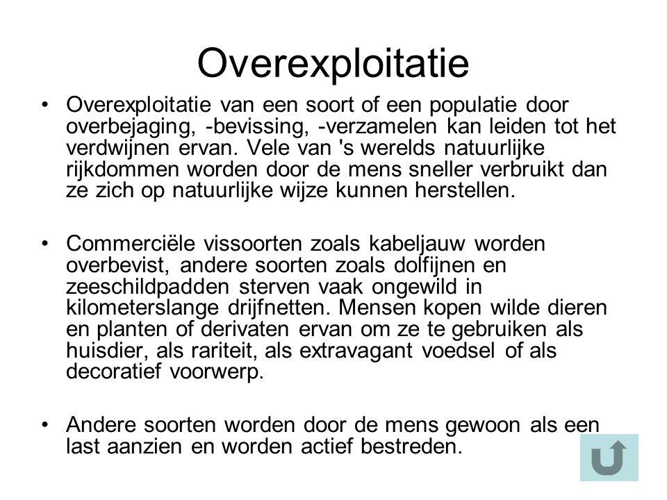 Overexploitatie