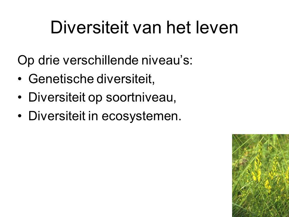 Diversiteit van het leven