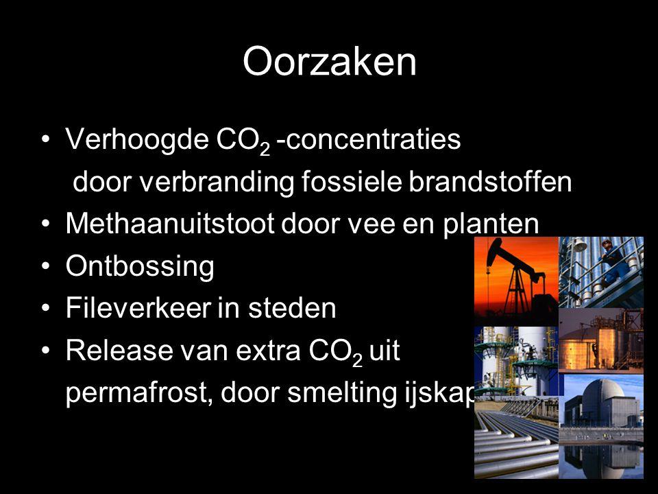 Oorzaken Verhoogde CO2 -concentraties