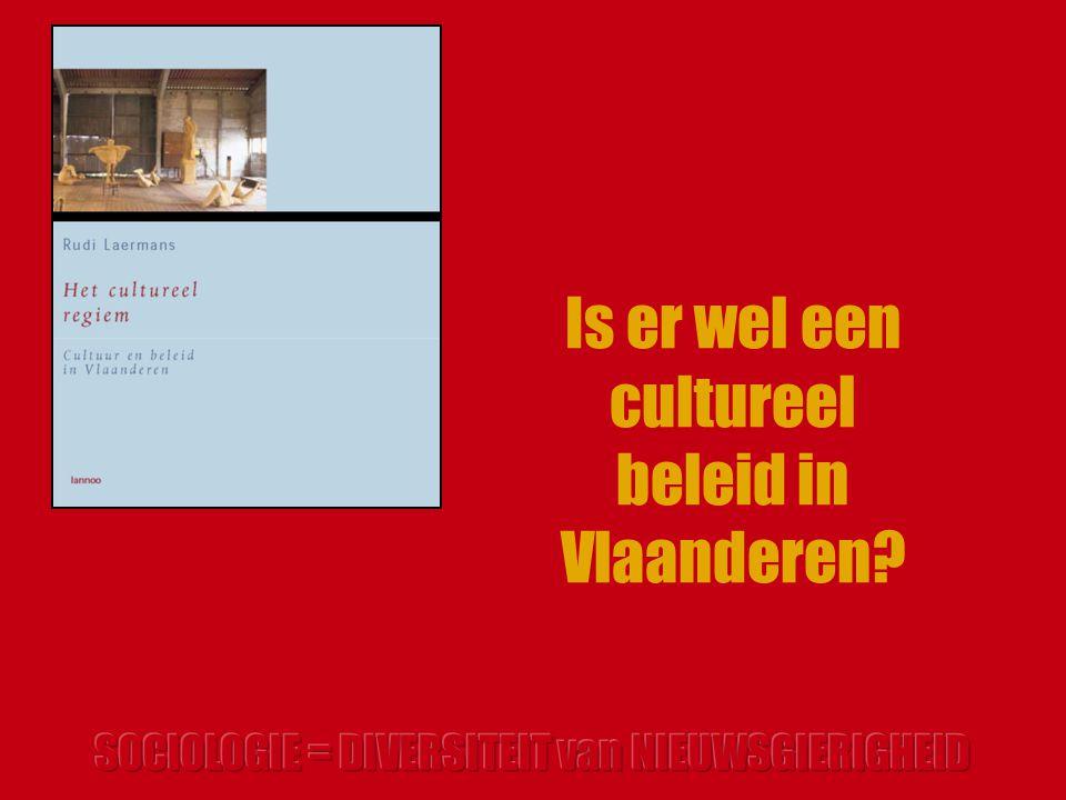 Is er wel een cultureel beleid in Vlaanderen