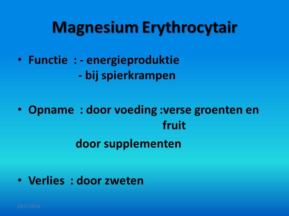 Magnesium Erythrocytair