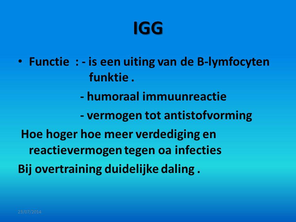 IGG Functie : - is een uiting van de B-lymfocyten funktie .