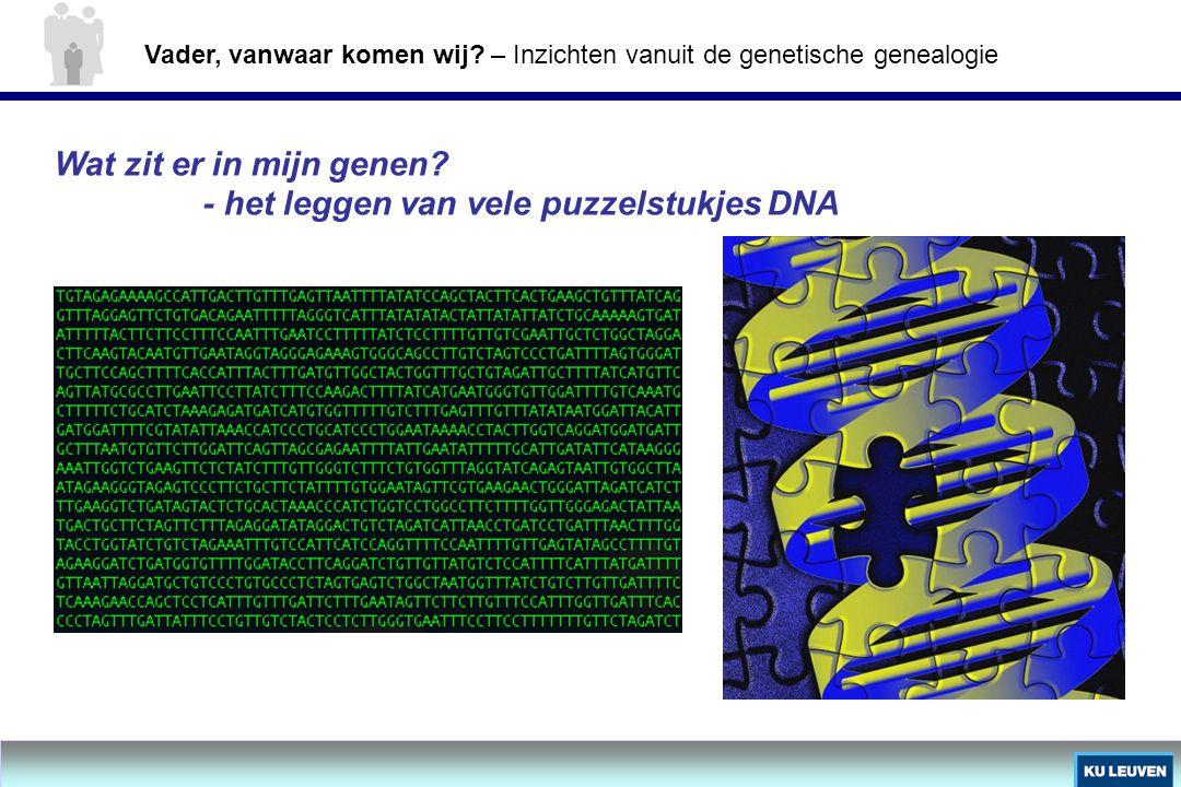 - het leggen van vele puzzelstukjes DNA