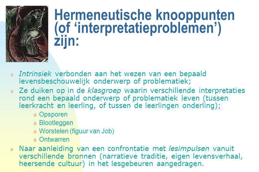 Hermeneutische knooppunten (of 'interpretatieproblemen') zijn: