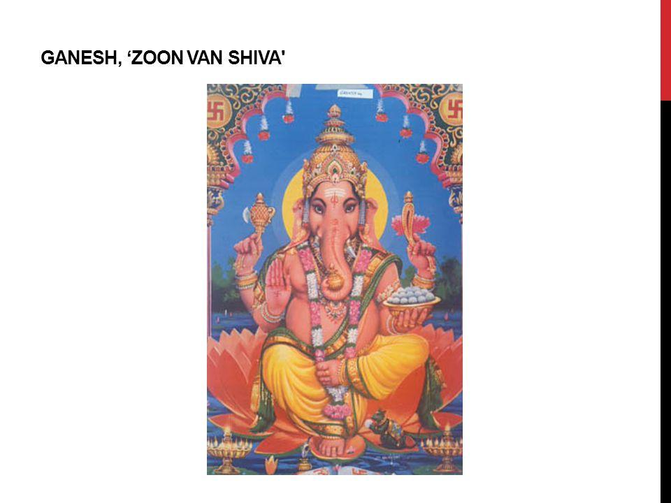 Ganesh, 'ZoOn VAN Shiva