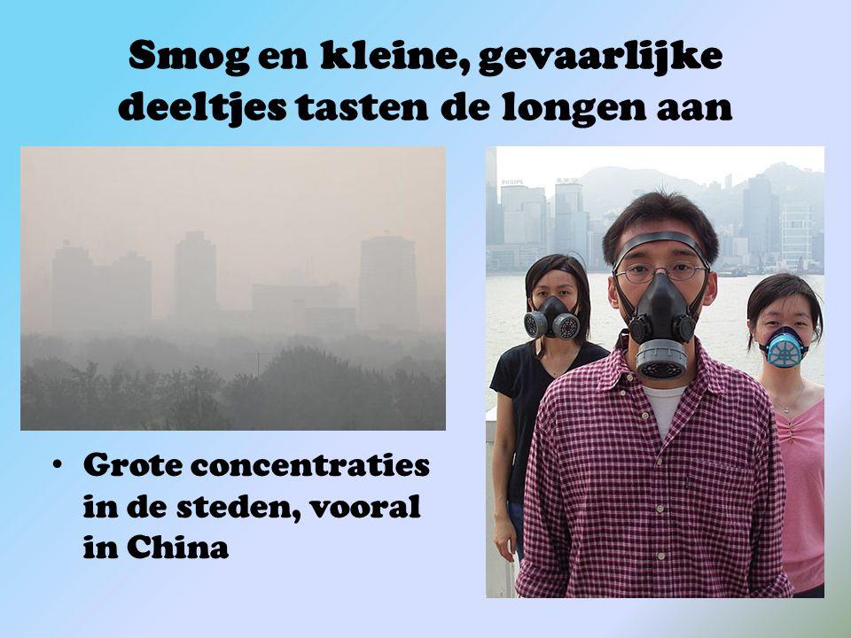 Smog en kleine, gevaarlijke deeltjes tasten de longen aan