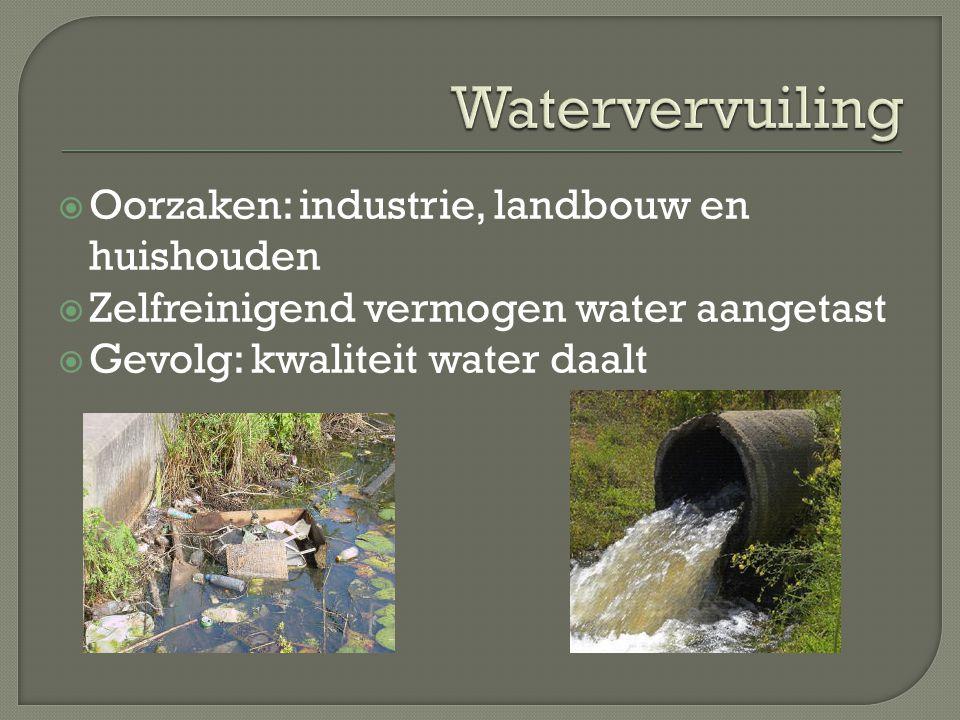 Watervervuiling Oorzaken: industrie, landbouw en huishouden