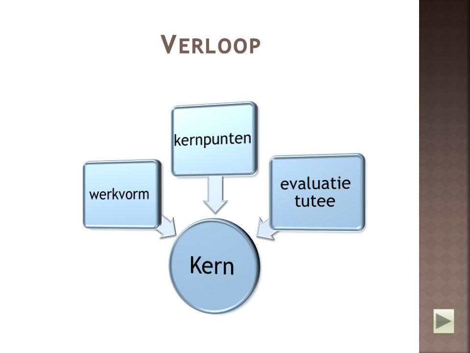 Verloop Kern werkvorm kernpunten evaluatie tutee