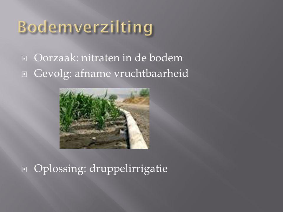 Bodemverzilting Oorzaak: nitraten in de bodem