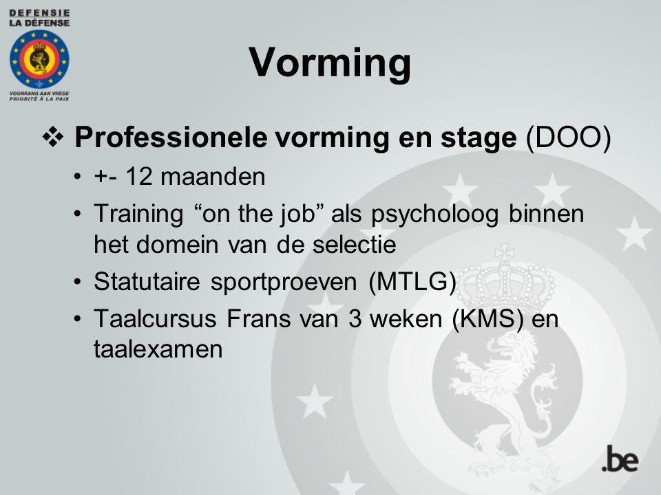 Vorming Professionele vorming en stage (DOO) +- 12 maanden