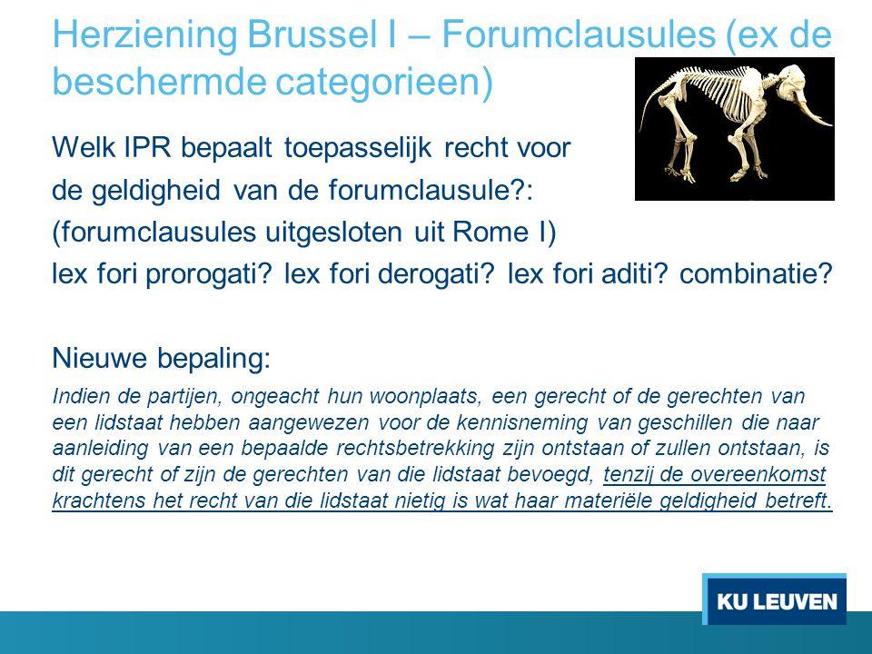 Herziening Brussel I – Forumclausules (ex de beschermde categorieen)