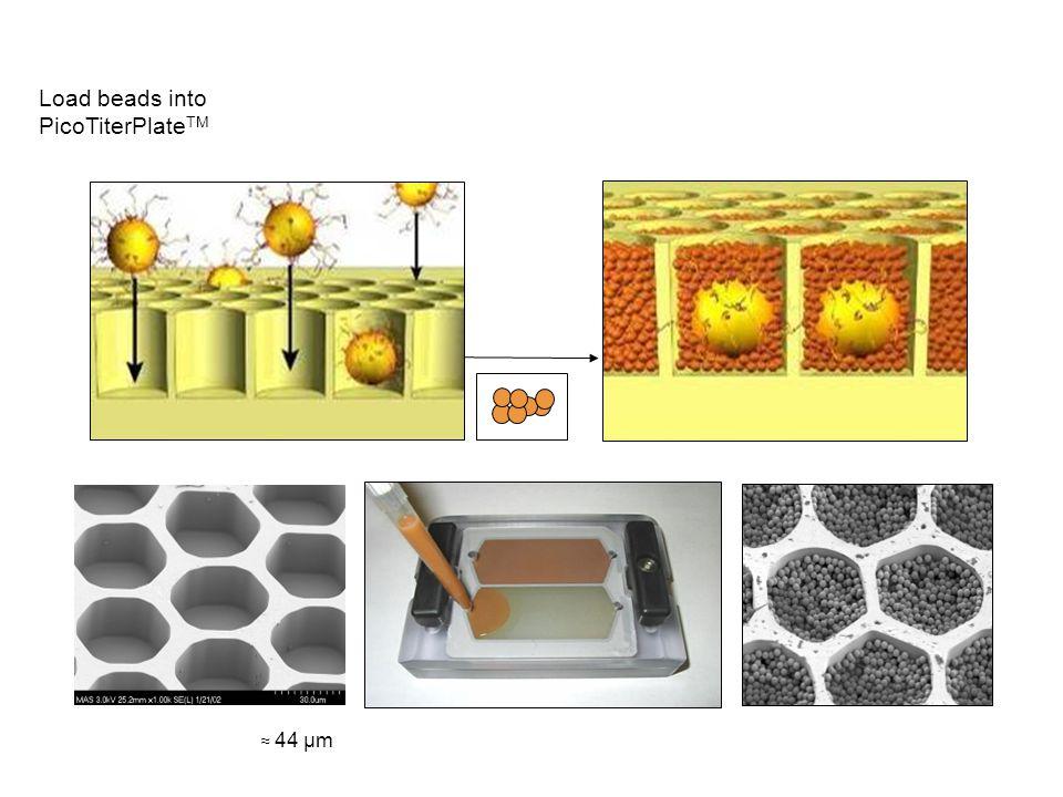 75 picoliter volume wells 480 wells/mm2 1,600,000 wells per 60 x 60mm